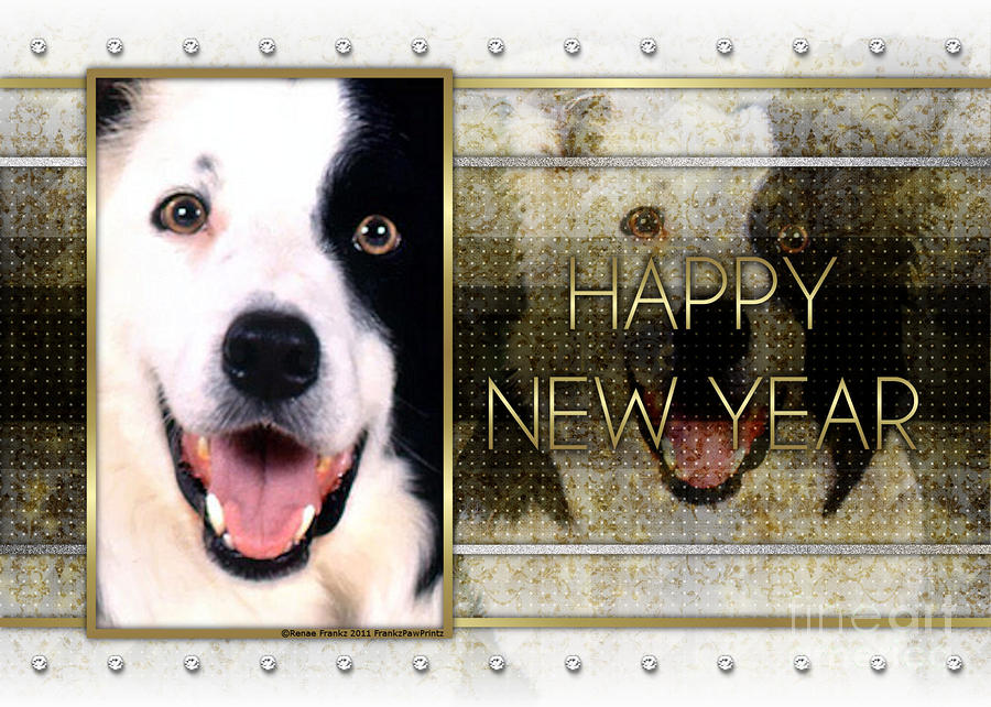 border collie digital art new year golden elegance border collie by renae crevalle
