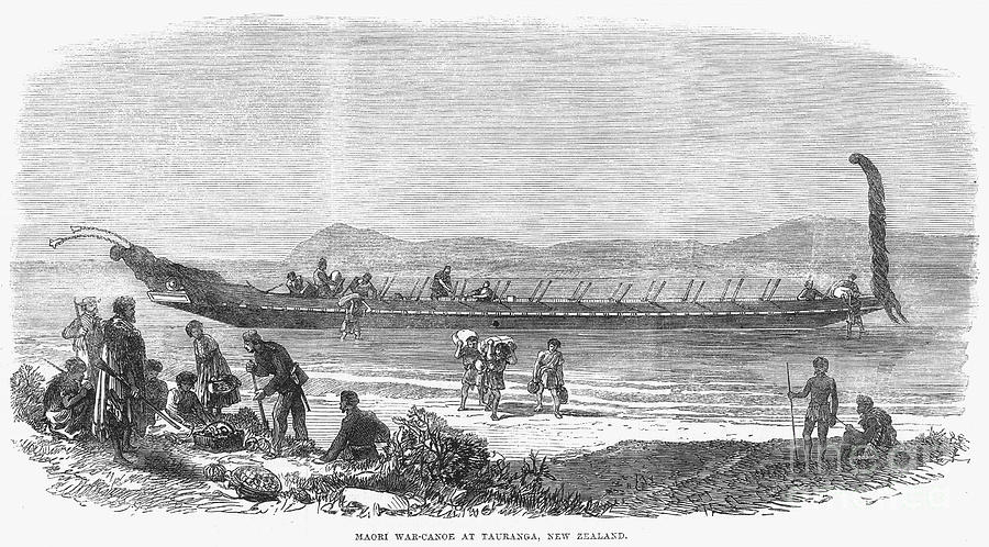 1864 Photograph - New Zealand: Maori Canoe by Granger