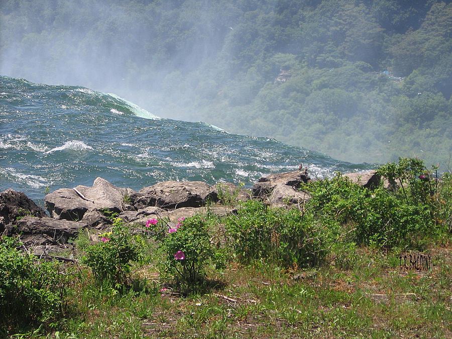 Niagara Usa Photograph - Niagara Falls Wonder Of The World by J R Baldini M Photog