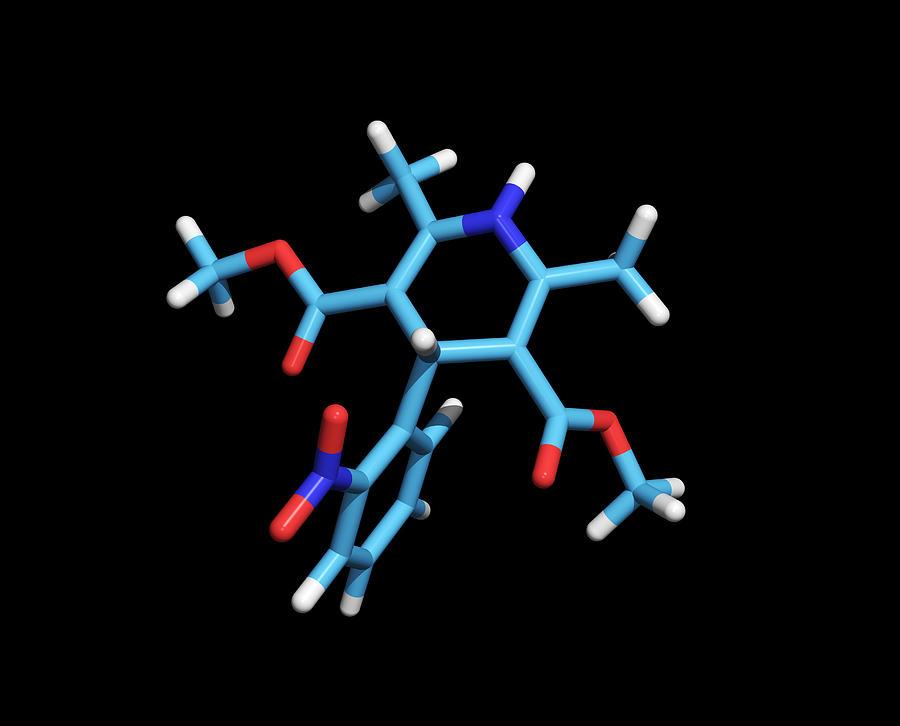 Nifedipine Photograph - Nifedipine Drug Molecule by Dr Tim Evans