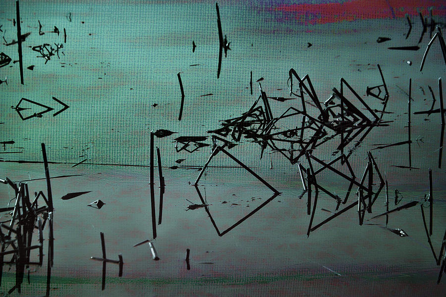 Abstract Photograph - Nightfall Over The Wetlands by Bonnie Bruno