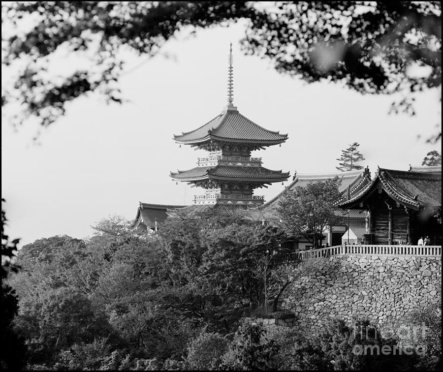 Kinkaku-ji Photograph - Ninna-ji Temple Kyoto by Aldo Cervato