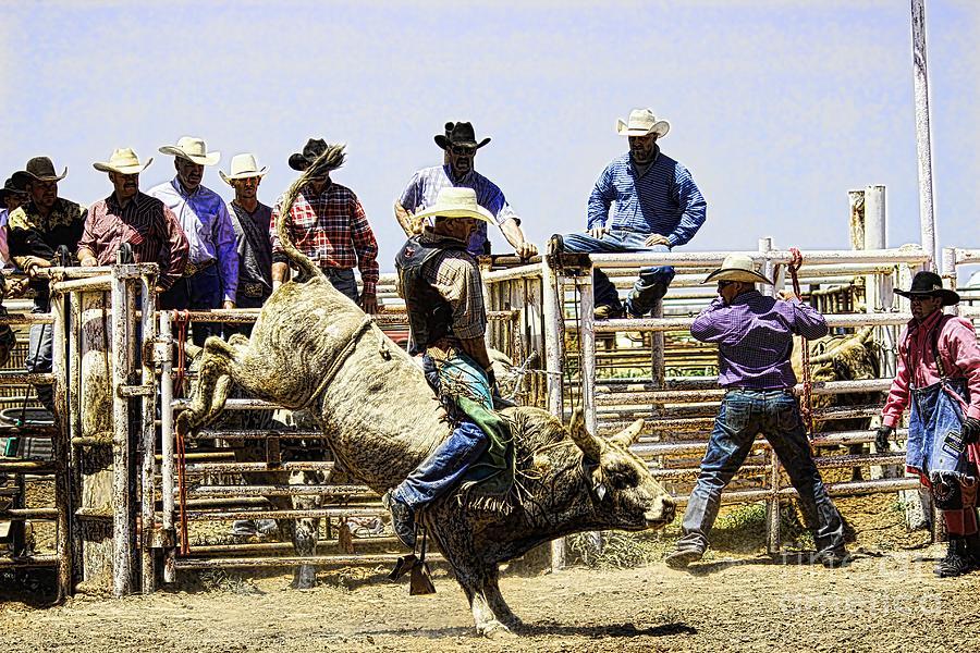 Cowboy Photograph - No Fear 2 by Rachelle Rice