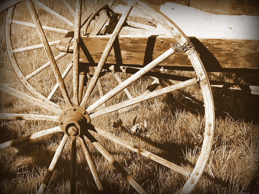 Cindy Photograph - No Gas Needed Buggy Wheels by Cindy Wright