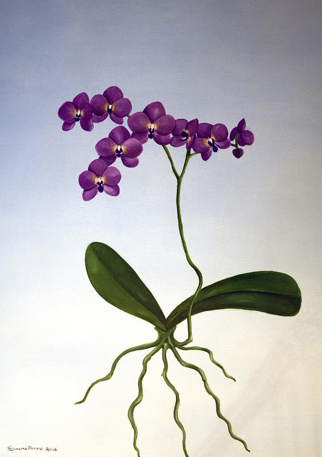 Botanical Painting - No Need To Belong by Simona  Mereu