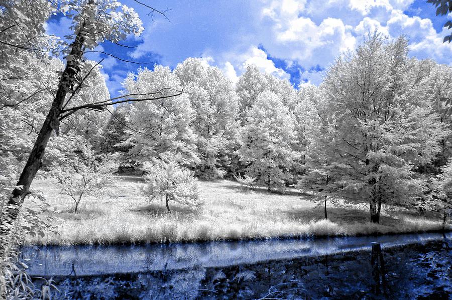Kentucky Photograph - Nobob Pond Ir by Amber Flowers