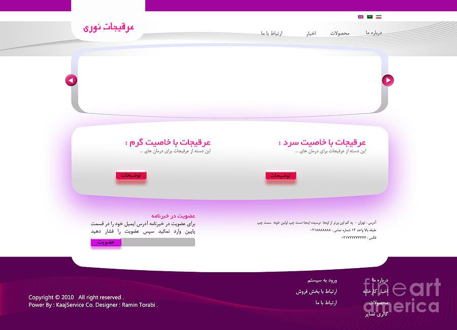 Noori Company Web Template Digital Art by Ramin Torabi