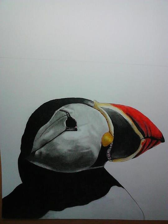 Birds Drawing - Nordic Birds by Per-erik Sjogren