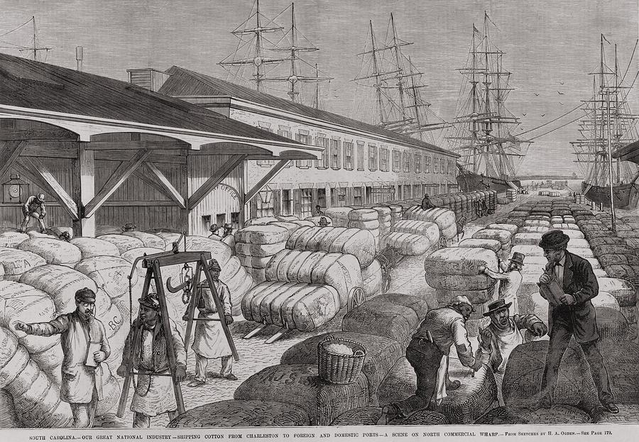 History Photograph - North Commercial Wharf Of Charleston by Everett