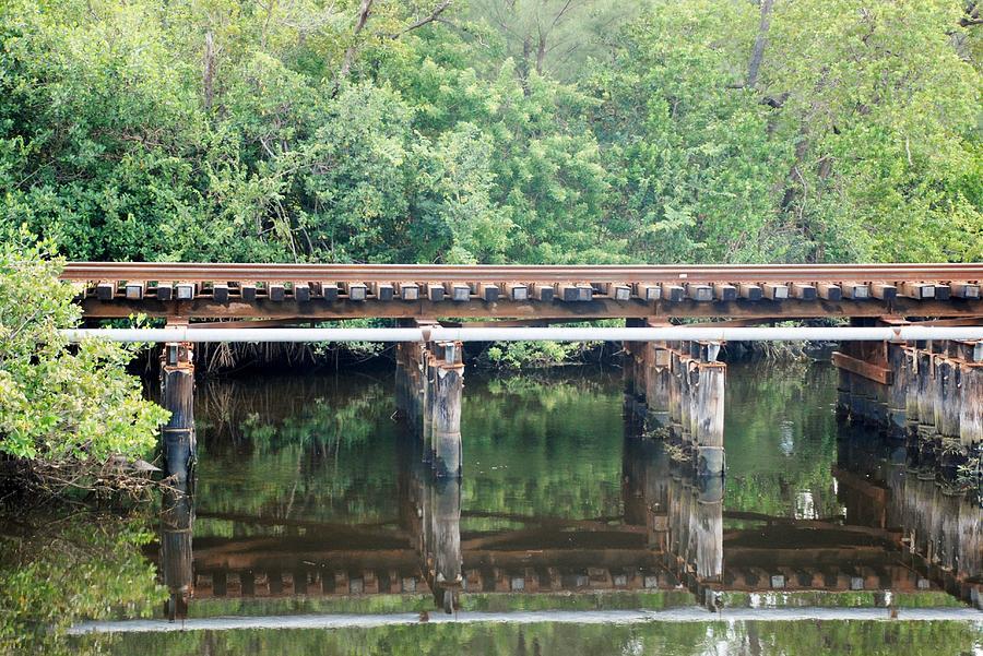 Green Photograph - North Fork River Bridge by Rob Hans