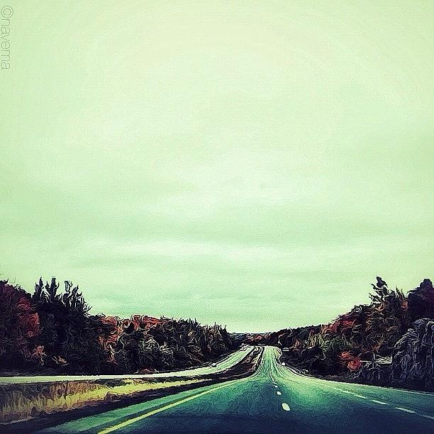Fall Photograph - Northbound by Natasha Marco
