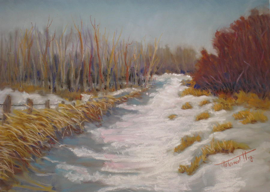 Snow Painting - Northern Alberta Vista by Mohamed Hirji