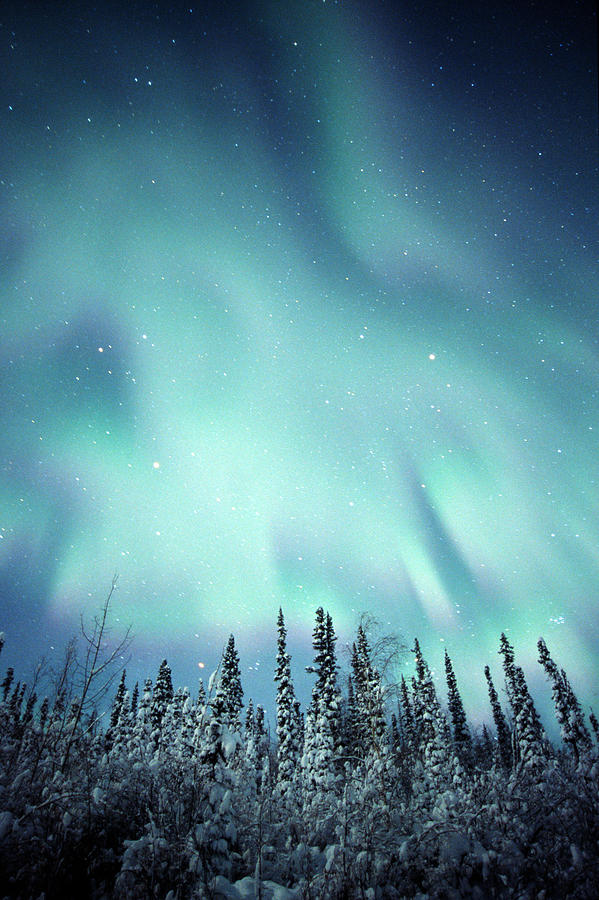 Light Photograph - Northern Lights Over Snow Covered by Robert Postma