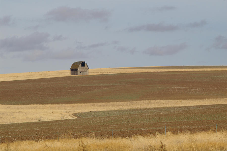 Barn Photograph - Not Much In Adams County Washington by Christine Burdine
