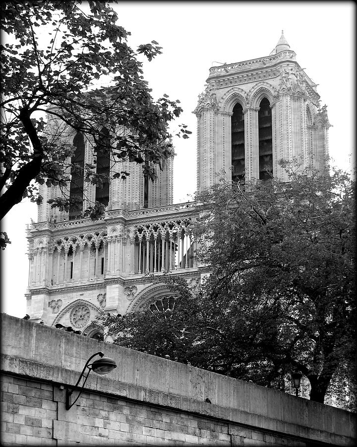 Notre Dame Cathedral by Carla Parris