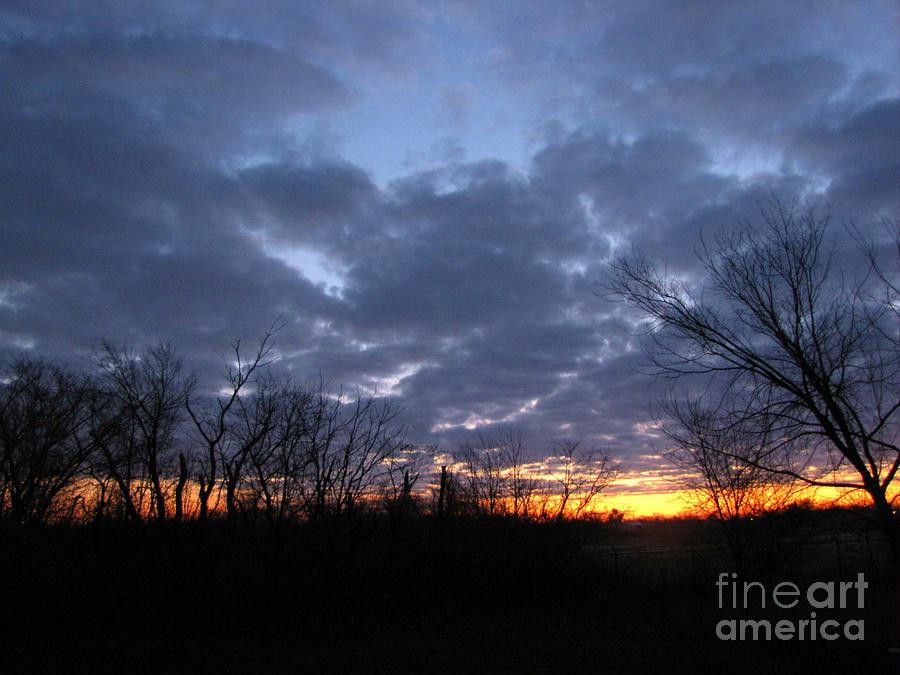 Landscape Photograph - November Sunrise by Cedric Hampton
