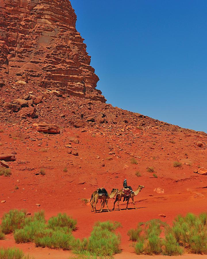 Jordan Photograph - Nubian Camel Rider by Tony Beck