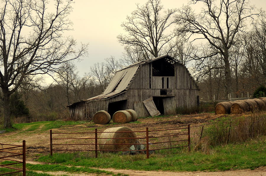 Barn Photograph - Oak Barn by Marty Koch