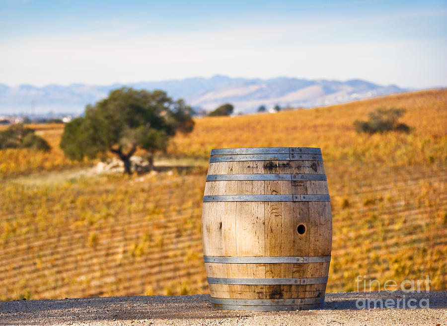 Agriculture Photograph - Oak Barrel At Vineyard by David Buffington