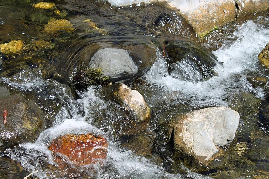 Oak Creek Photograph - Oak Creek by Lauri Novak