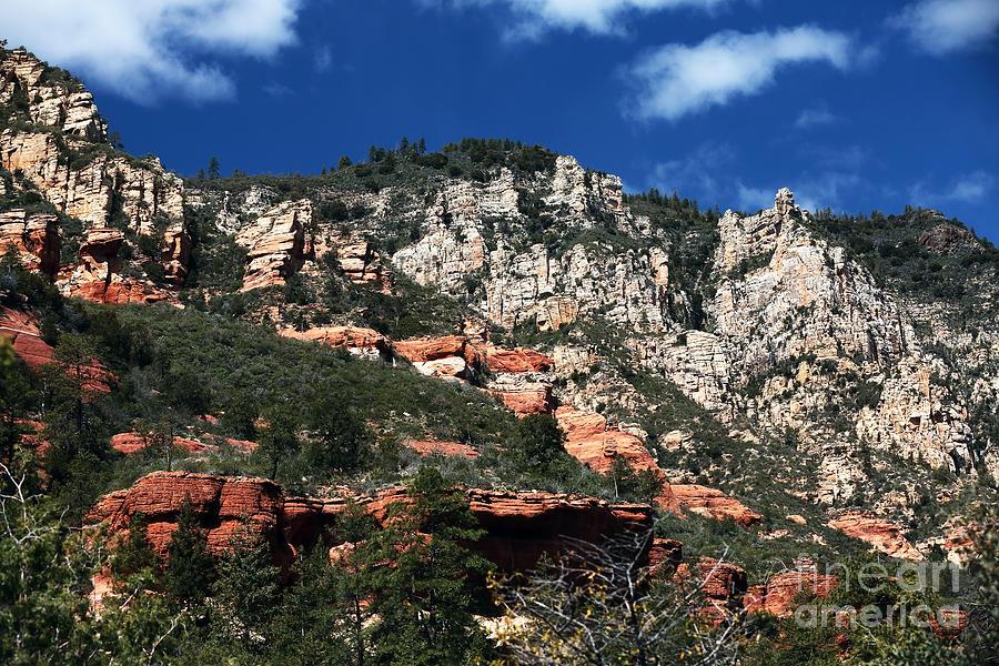 Oak Creek Canyon Photograph - Oak Creek Nature by John Rizzuto