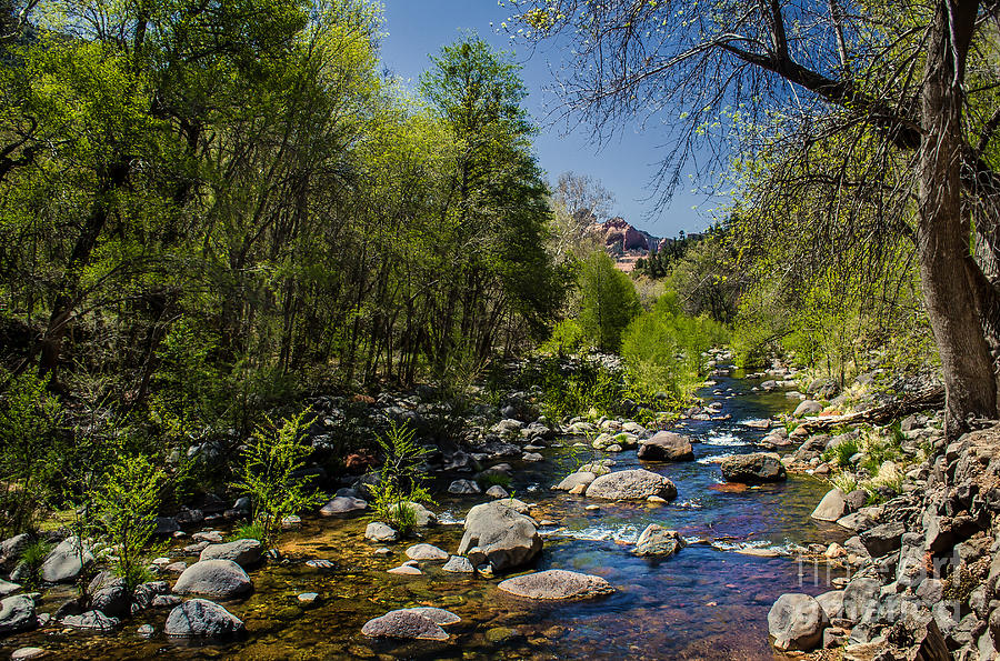 Stream Photograph - Oak Creek by Robert Bales