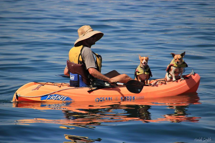 Kayaking Photograph - Ocean Kayaking by Heidi Smith