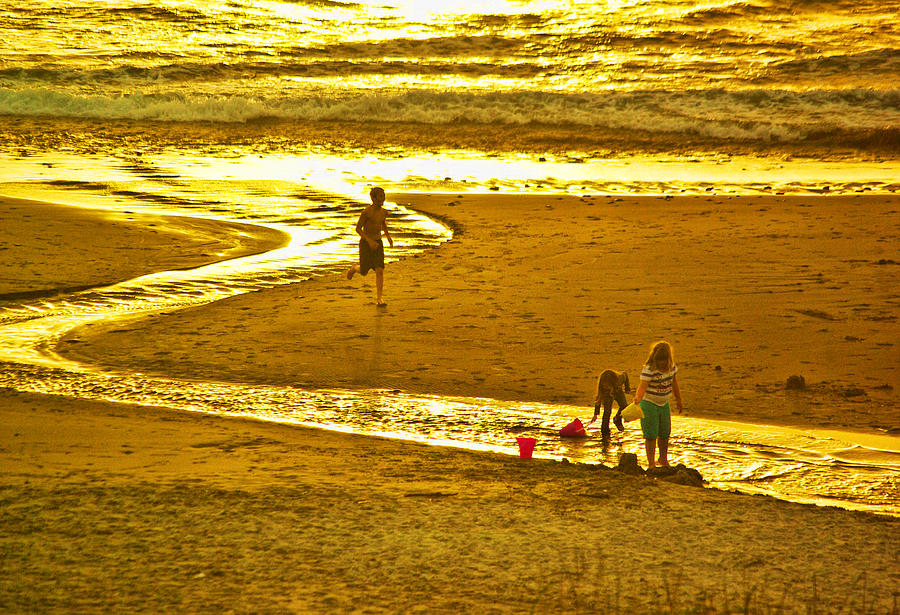 Pacific Ocean Photograph - Ocean Play by Dale Stillman