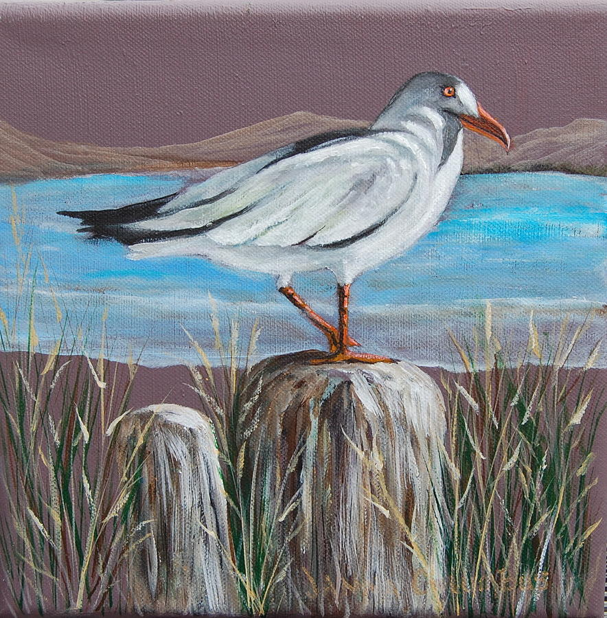 Sea Gull Painting - Ocean Sea Gull by Janna Columbus