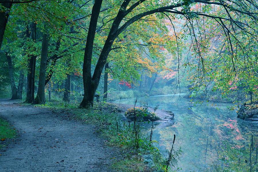 Landscape Photograph - October Mist by Mandi Howard