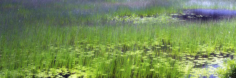 Impressionist Photograph - Ode To Monet by Bob Retnauer