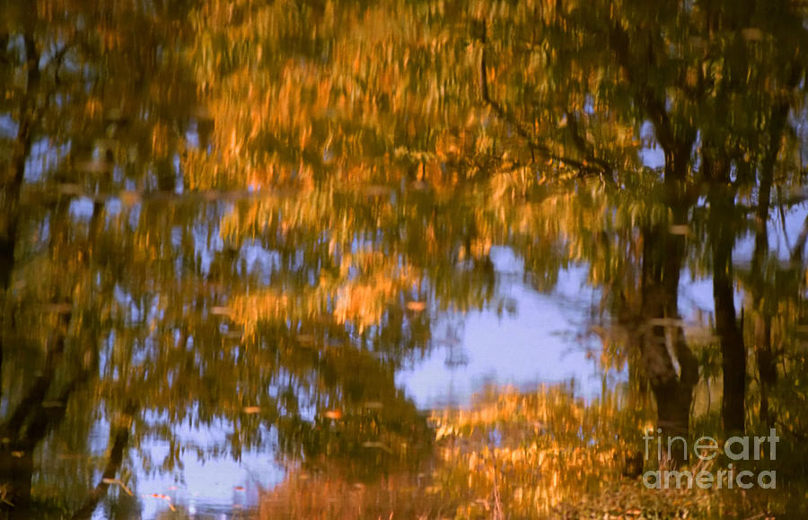 Impressionistic Photograph - Ode To Monet by Janeen Wassink Searles