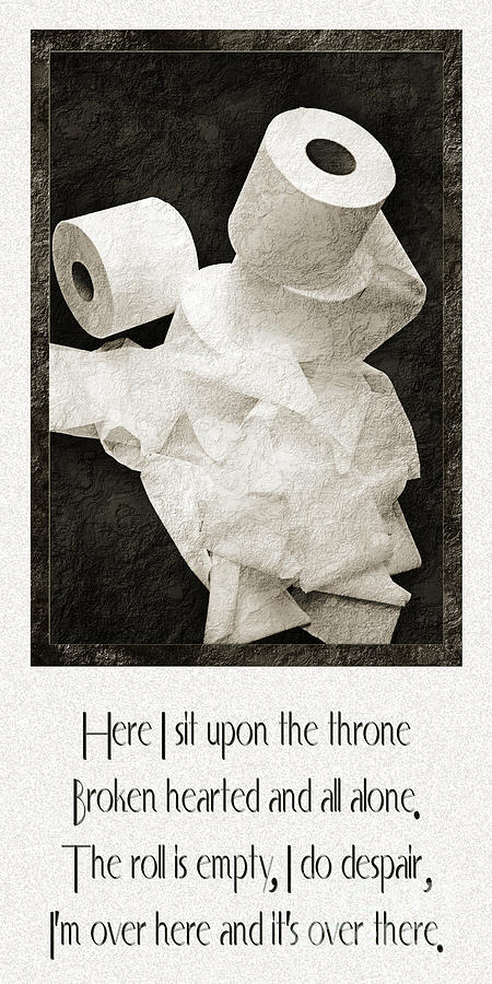 Toilet Paper Photograph - Ode To The Spare Roll by Andee Design
