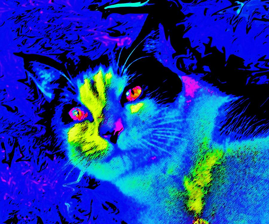 Cats Mixed Media - Oden Oreo by Julie Hiskett