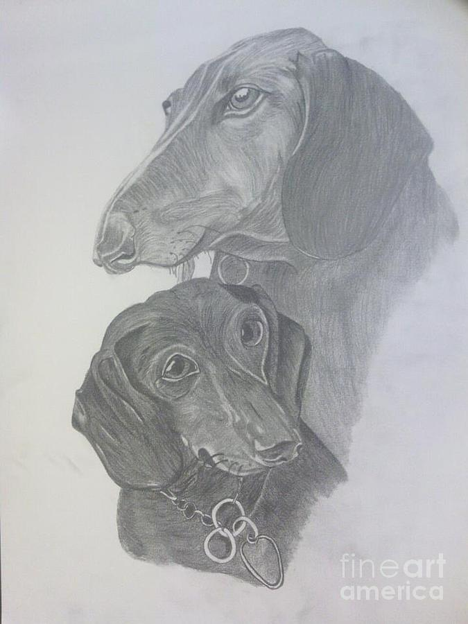 Dogs Drawing - Odi And Eli by Lora Marsh