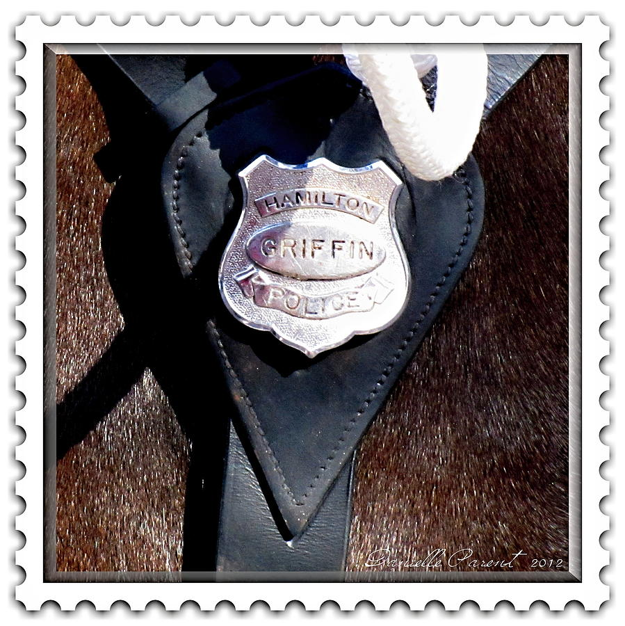 Animals Photograph - Officer Griffin by Danielle  Parent