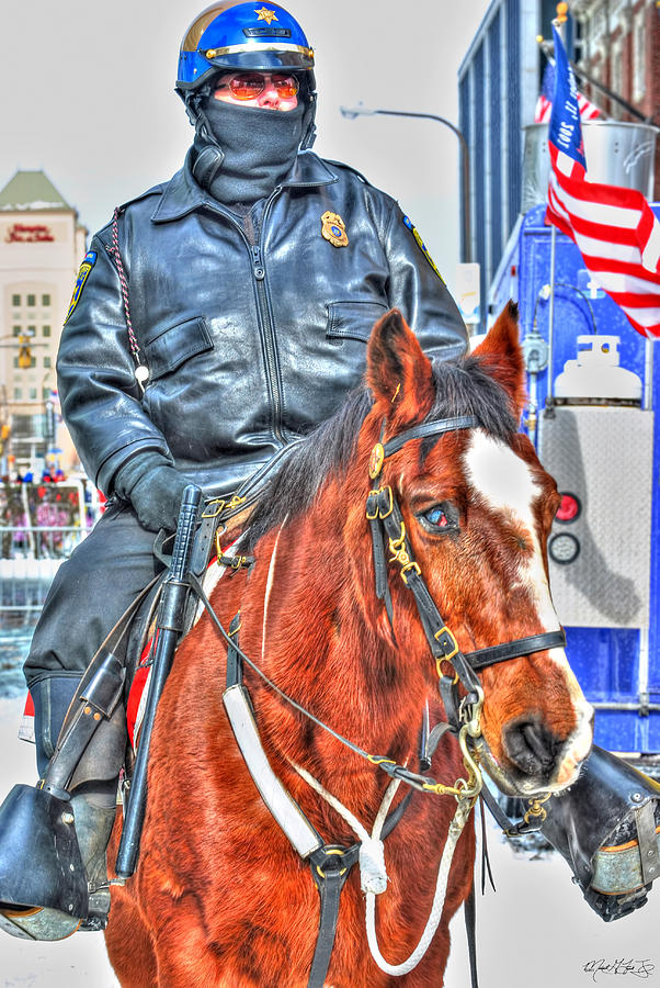 Officer On Brown Horse Photograph