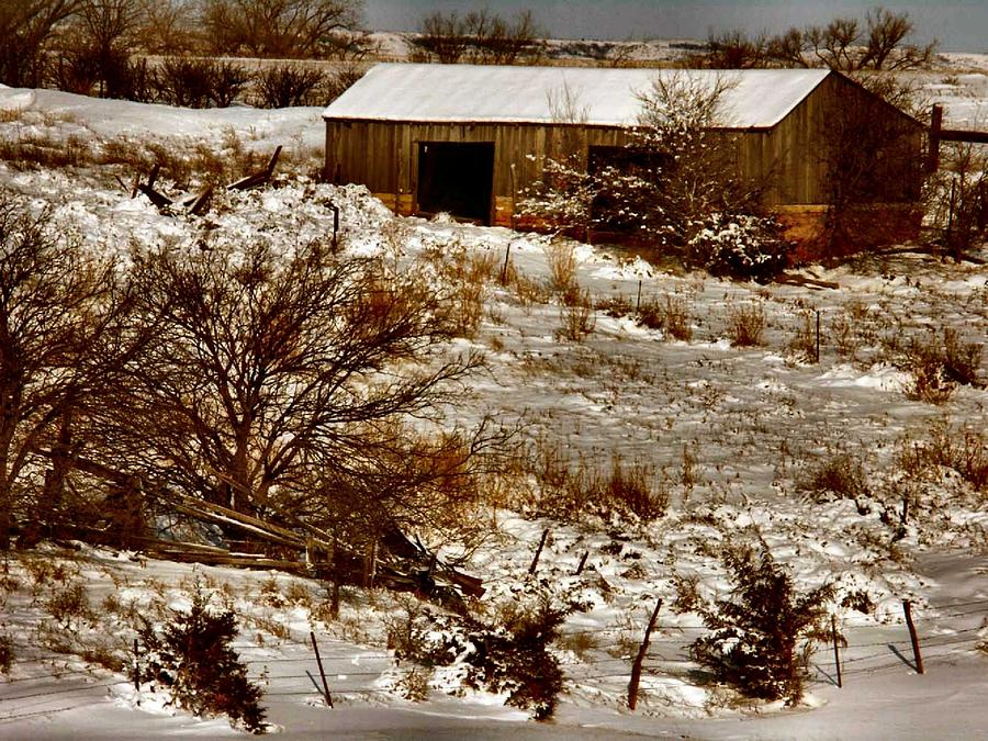 Barn Photograph - Ohhhh Its Cold by Lynne and Don Wright
