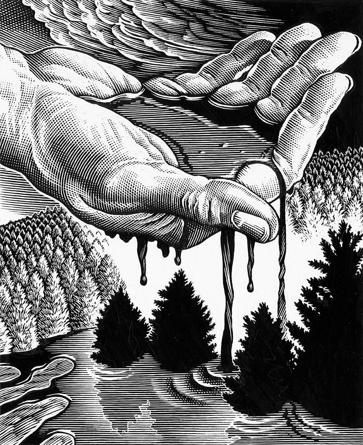 Hand Photograph - Oil Pollution by Bill Sanderson