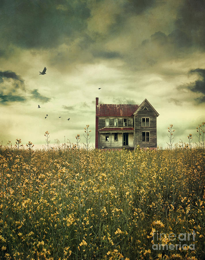 Old Abandoned Farmhouse In Field Of Rapeseed Photograph by ...