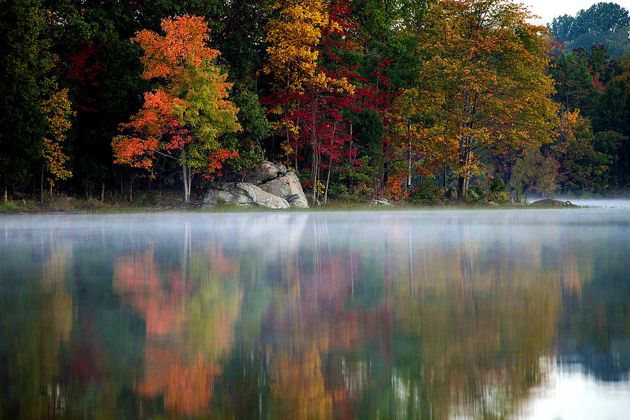 Autumn Photograph - old Autumn by Mitch Cat
