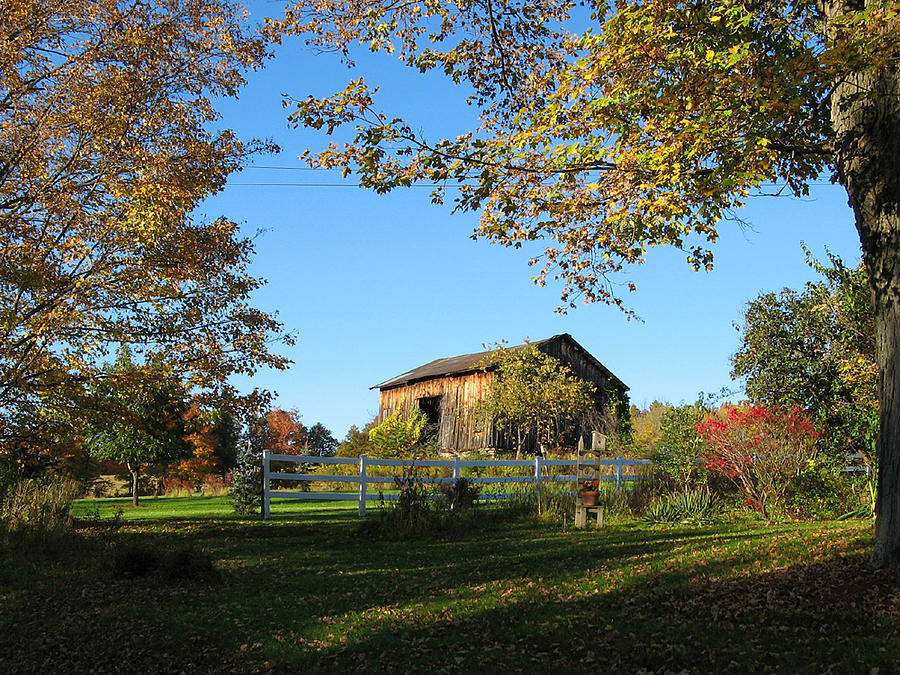 Barn Photograph - Old Barn During Fall by Leontine Vandermeer