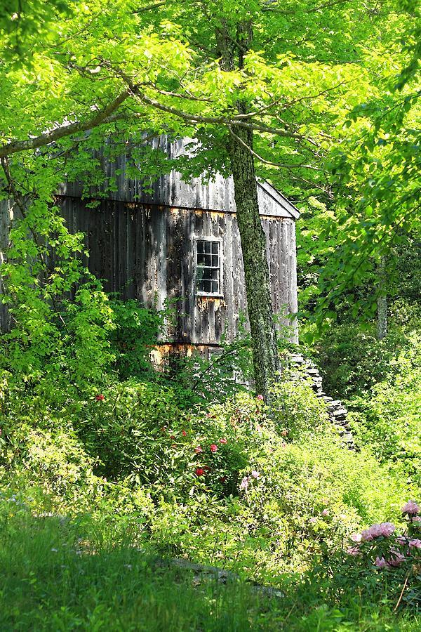 Mill Photograph - Old Barn by Sara Walsh