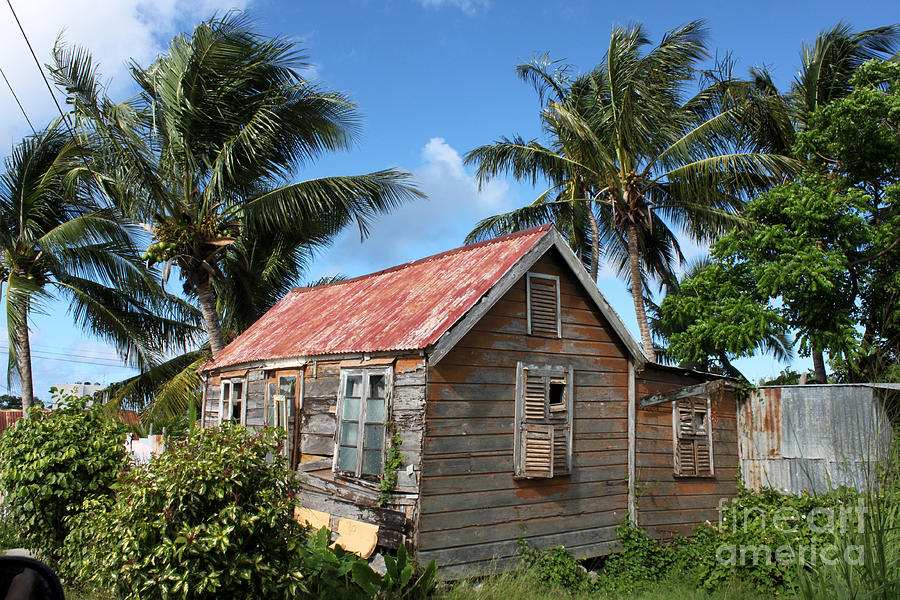 Photograph - Old Chattel House 2 by Barbara Marcus