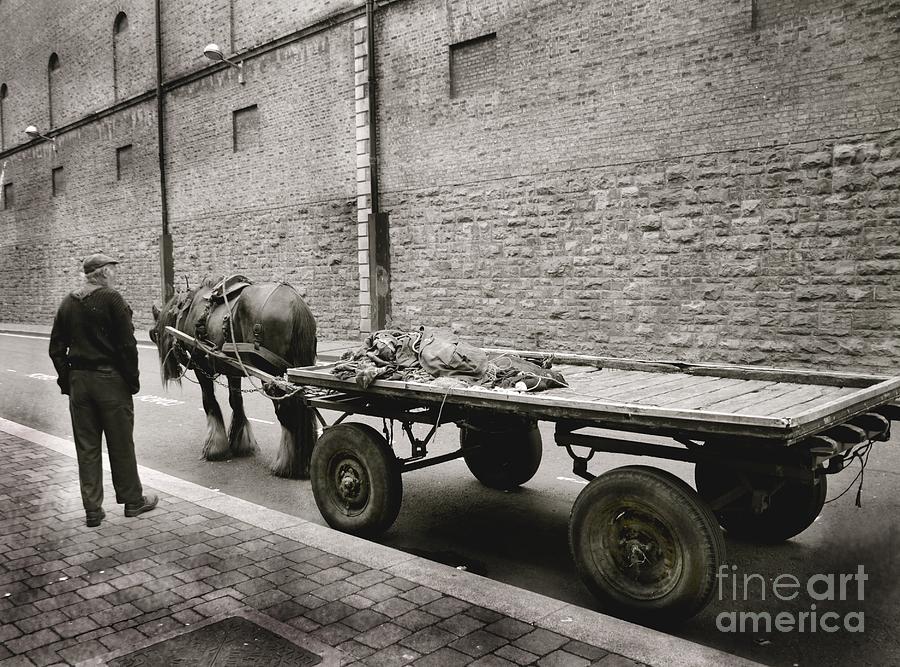Dublin Photograph - Old Clydesdale Dublin by Louise Fahy