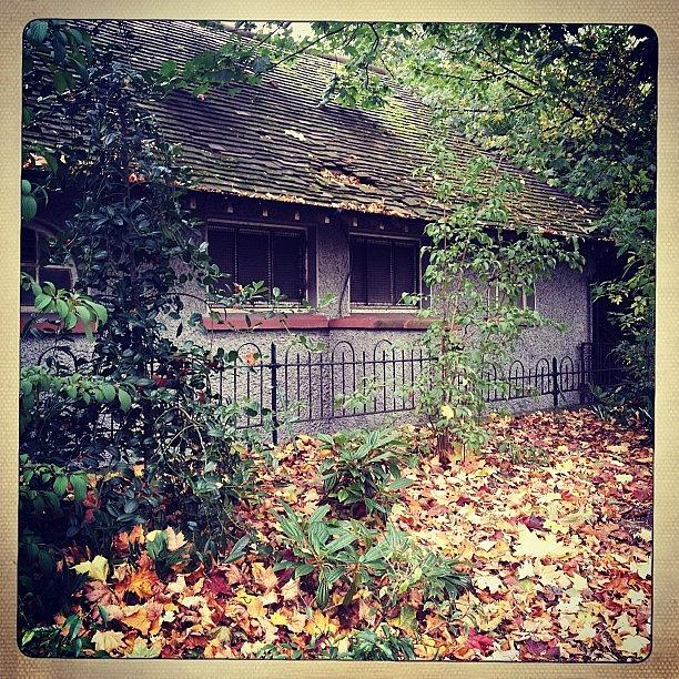 Dublin Photograph - Old #cottage. #autumn #dublin #ireland by David Lynch