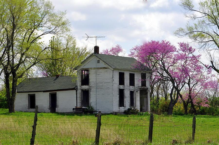 Farm Photograph - Old Farmstead by Marty Koch