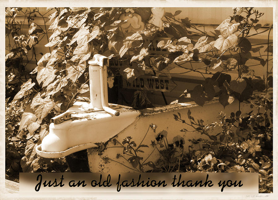 Greeting Card Photograph - Old Fashion Thank You Card by Susan Kinney