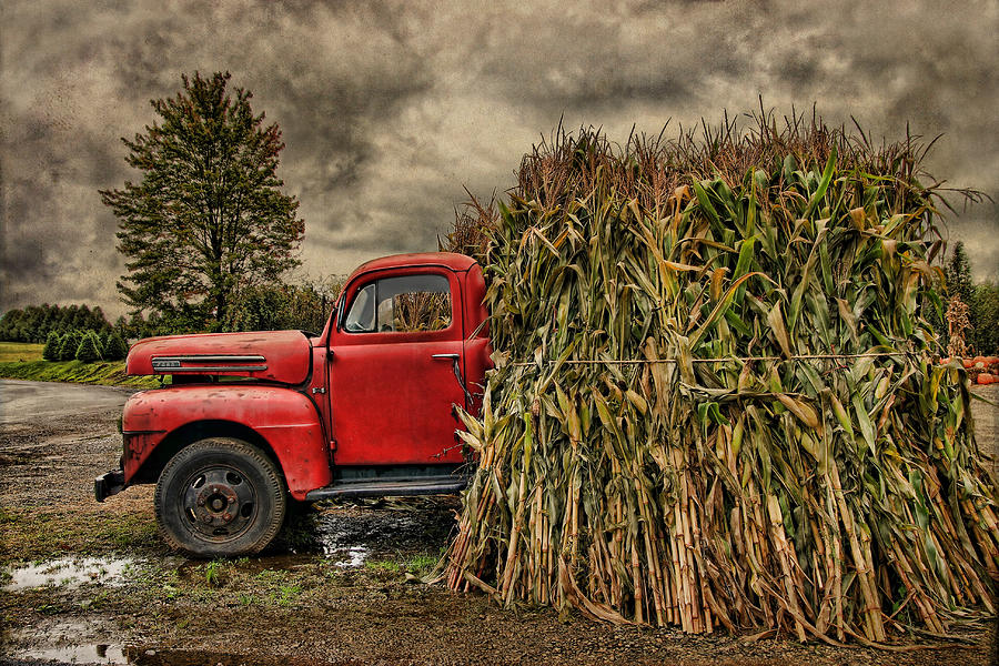 Ford Photograph - Old Ford Truck by Pat Abbott