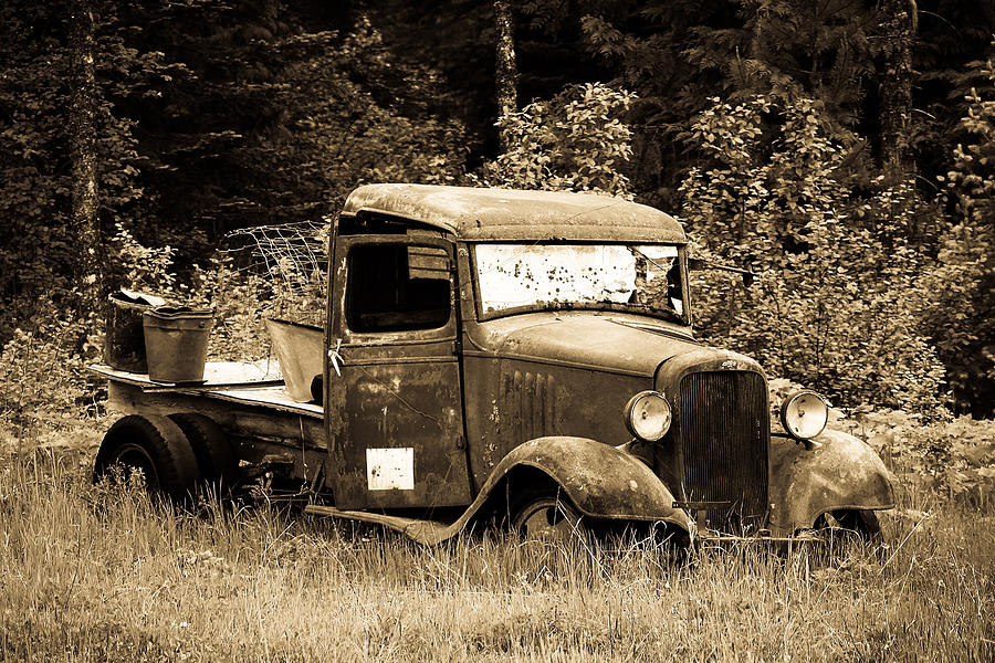 Black And White Photograph - Old Gold by Steve McKinzie